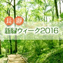 新緑ウィーク2016