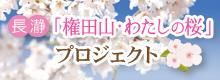「権田山・わたしの桜」プロジェクト