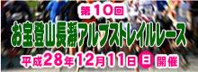 第10回 お宝登山・長瀞アルプストレイルレース