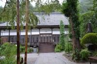 法善寺のフジバカマ→2~3分咲き