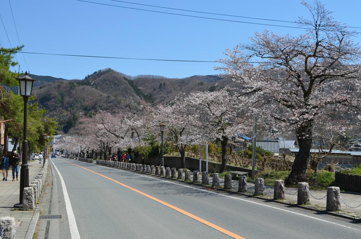 DSC_0873   長瀞町観光協会公式サイト
