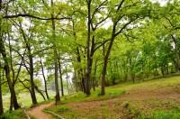 蓬莱島公園 (1)