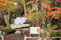 月の石もみじ公園 (3)