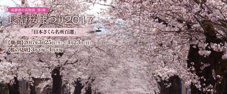 長瀞桜まつり2017