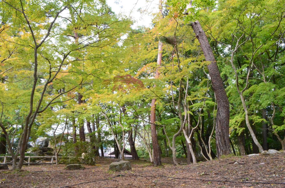 DSC_0583   長瀞町観光協会公式サイト