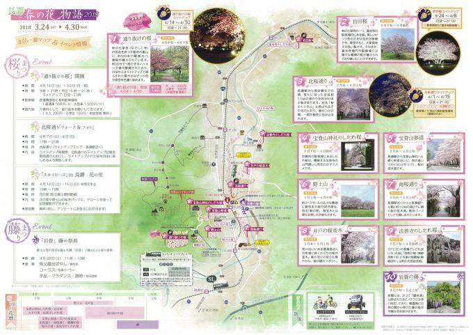 Nagatoro Cherry Blossom Festival
